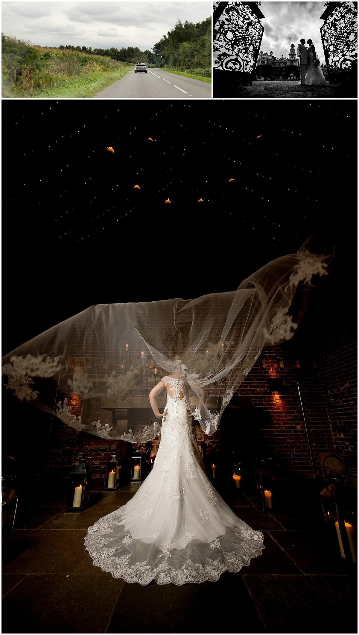 Stunning bride & veil