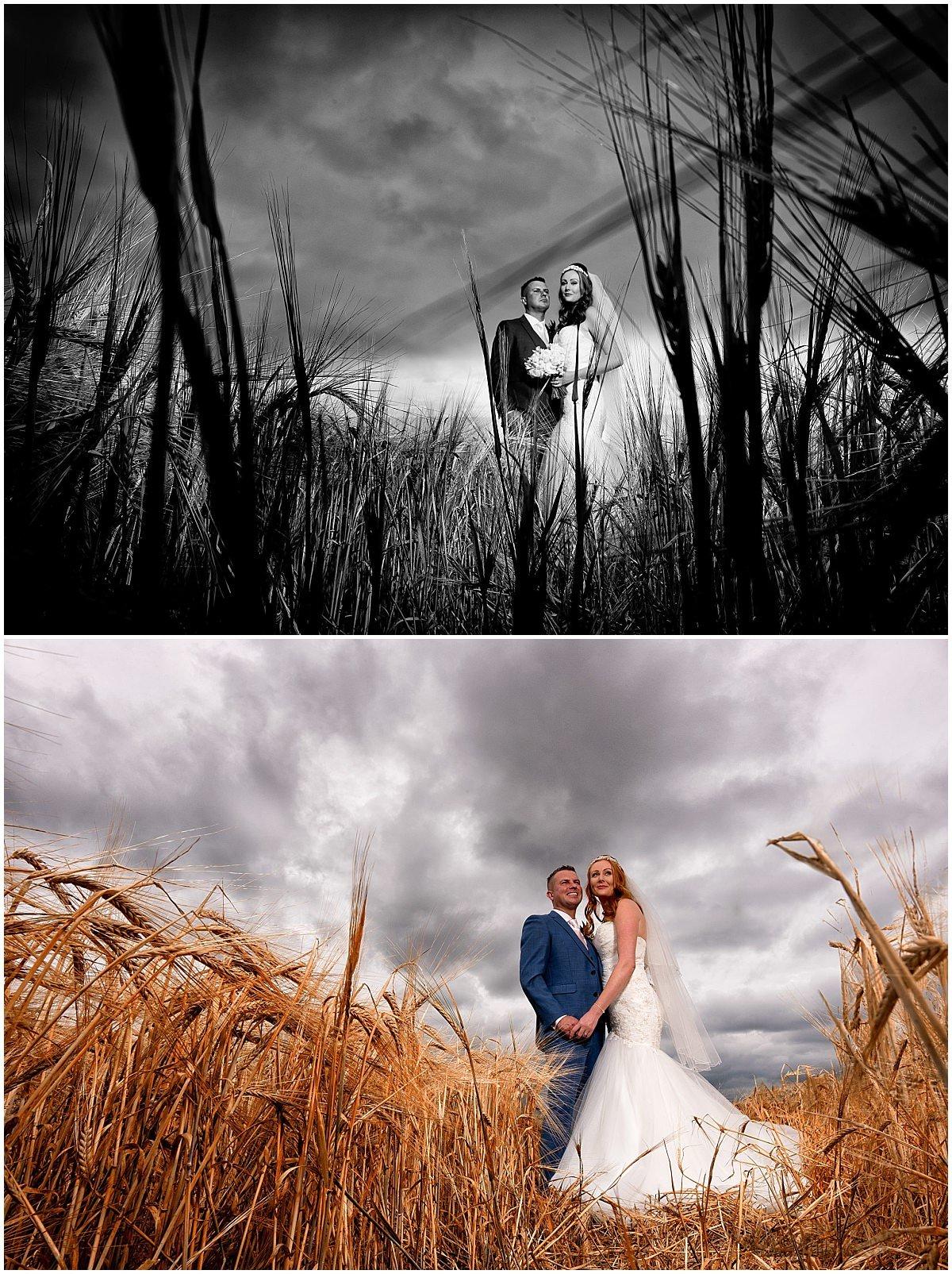 Corn field bride portraits