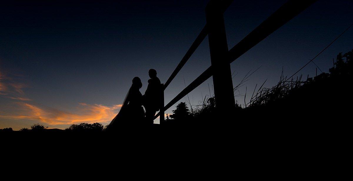 Swancar Farm silhouette